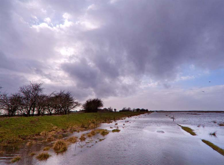 Drumburgh Marshes, Hadrian's Wall, Cumbria
