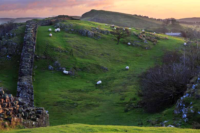 Walltown Crags, Walltown, Hadrian's Wall, Northumberland