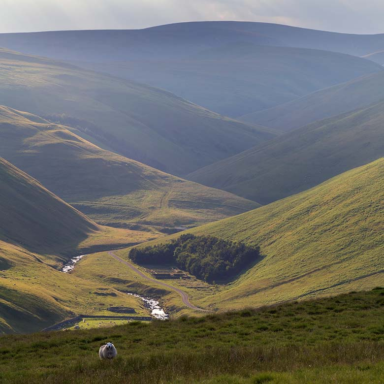 Barrowburn, Upper Coquetdale, Northumberland National Park
