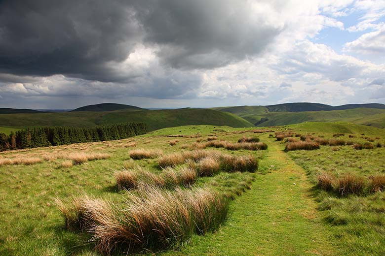Little Ward Law, Cheviots, Northumberland National Park